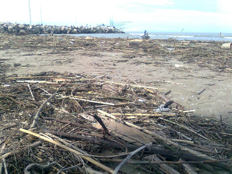 Spiaggia invasa dai detriti