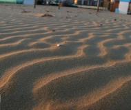 25/01/2020 - La spiaggia di velluto