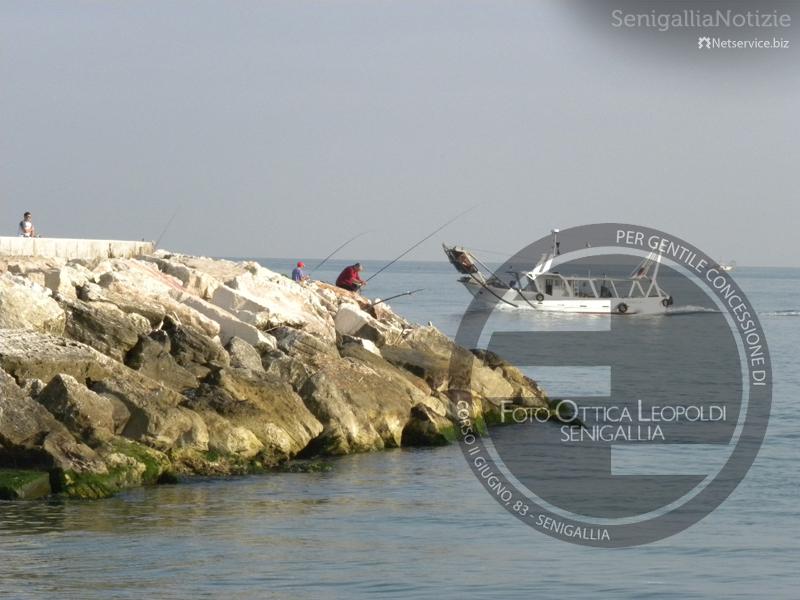 Pescatori al porto di Senigallia - Leopoldi-1632