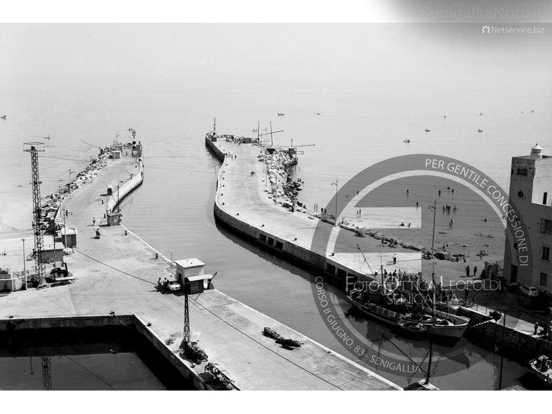 Foce del Misa e vecchio porto canale - Leopoldi-2163