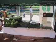 Mercato bio Mezza Campagna: verdure