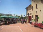 Inaugurazione di Mezza Campagna negli spazi di Arvultùra