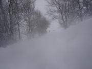 Sotto la tormenta di neve