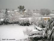 Senigallia, zona Cesanella innevata
