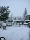 Immagini della neve da Ripe