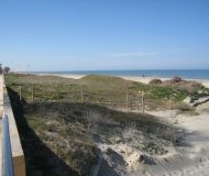 Le dune in spiaggia al Ciarnin di Senigallia