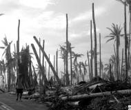 Le Filippine devastate dal tifone Haiyan nelle foto di Gabriele Moroni