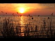 03/07/2015 - Sole all'orizzonte