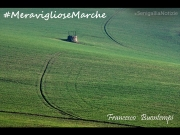 06/07/2015 - Meravigliose Marche