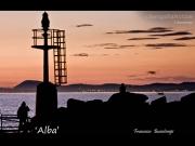 11/07/2015 - Alba
