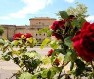 11/07/2017 - La Rocca e la rosa