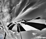 22/07/2017 - Una giornata ventosa