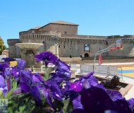 12/07/2018 - Un canestro di fiori in piazza del Duca