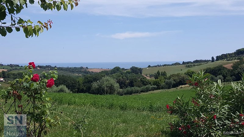 01/07/2019 - Estate in collina