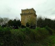 21/05/2016 - Torre Albani, Montignano