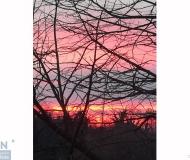 20/05/2019 - Un tramonto