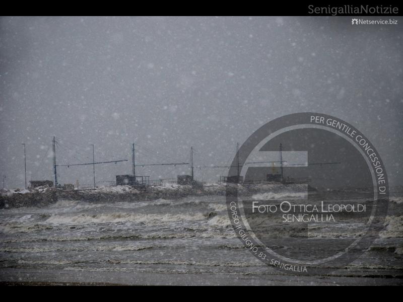 Cade la neve sul porto di Senigallia - Leopoldi-2002