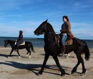 04/03/2016 - A cavallo in spiaggia