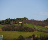 23/03/2016 - In collina