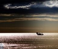 25/03/2019 - Paesaggio marino dorato