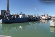 La darsena del porto di Senigallia con le cinque motonavi ex Navalmeccanico