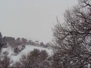 Colline intorno a Corinaldo la mattina del 3 febbraio
