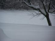 Zona Vallone di Senigallia coperta da una coltre bianca