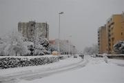 Via dei Gerani, Senigallia