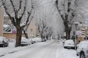 Viale IV Novembre, Senigallia