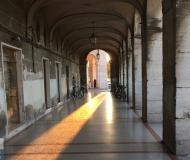 10/11/2016 - Lingua di sole nel portico