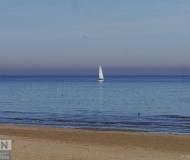 08/10/2017 - Navigante di domenica