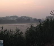 31/10/2017 - Nebbia nell'erba