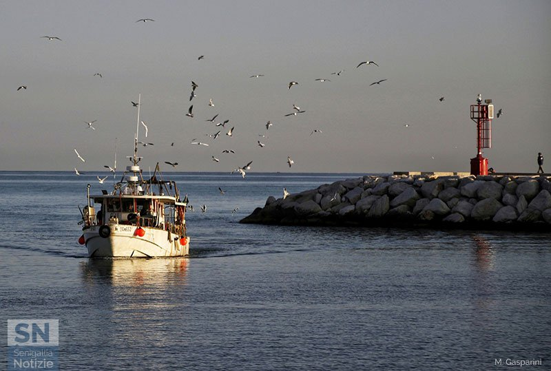20/10/2019 - Rientro in porto