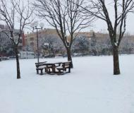 Seconda nevicata a Senigallia: foto dei lettori