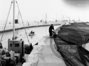 Pescatori al porto di Senigallia - Leopoldi-1040