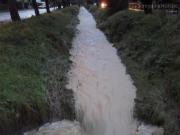La situazione del fosso Sant'Angelo a Senigallia
