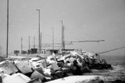 Il porto di Senigallia innevato