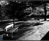 19/09/2018 - A piedi nel parco