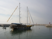 L'arrivo della Goletta Verde al porto di Senigallia