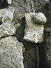 Parte superiore di un muro romano