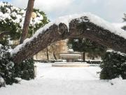 Giardini Morandi