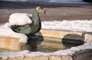 Fontana delle oche
