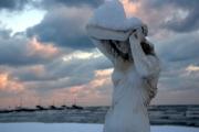 Sotto il peso della neve - Foto di Carlo Cavalletti