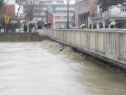 Ponte Garibaldi, Senigallia