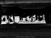 Una foto per Chanel: Italia Cup Laser a Senigallia