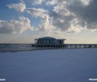 Febbraio 2010