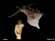 17/07/2009 - La Notte della Rotonda a Senigallia