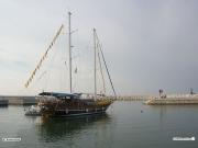 10/07/2010 - La Goletta Verde nel porto di Senigallia