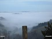 21/01/2011 - Nebbia nella Valmisa