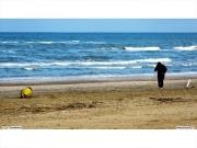 01/04/2011 - La spiaggia di Senigallia